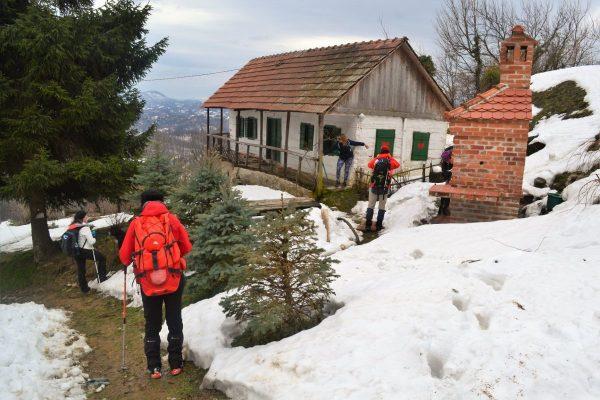 Runolistaši zimi na zagorskim bregima