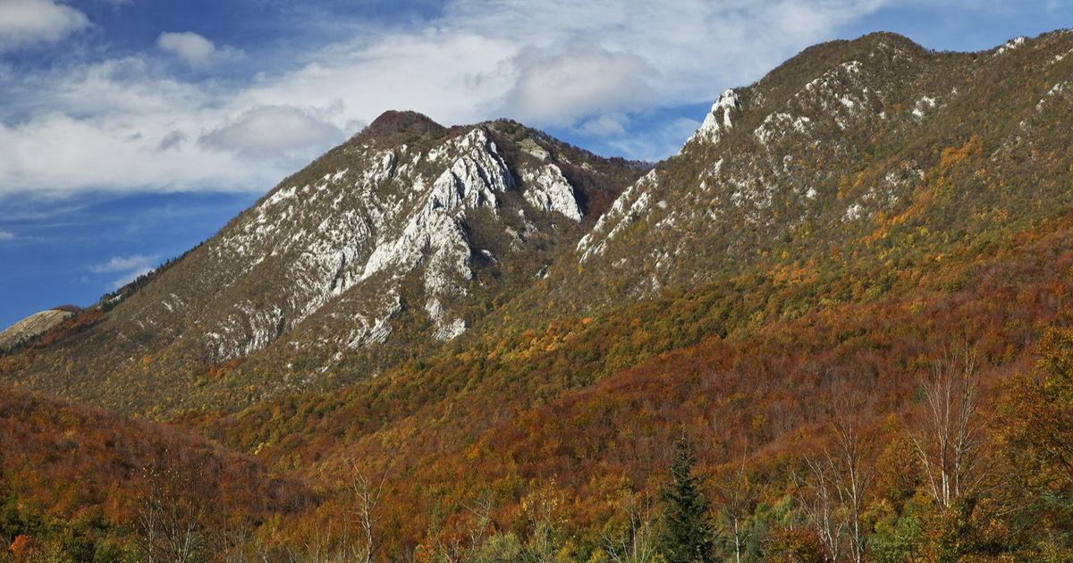 Stankov vrh na Bilogori